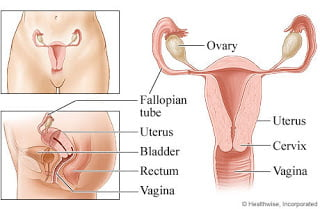 Vaginal Cancer and types